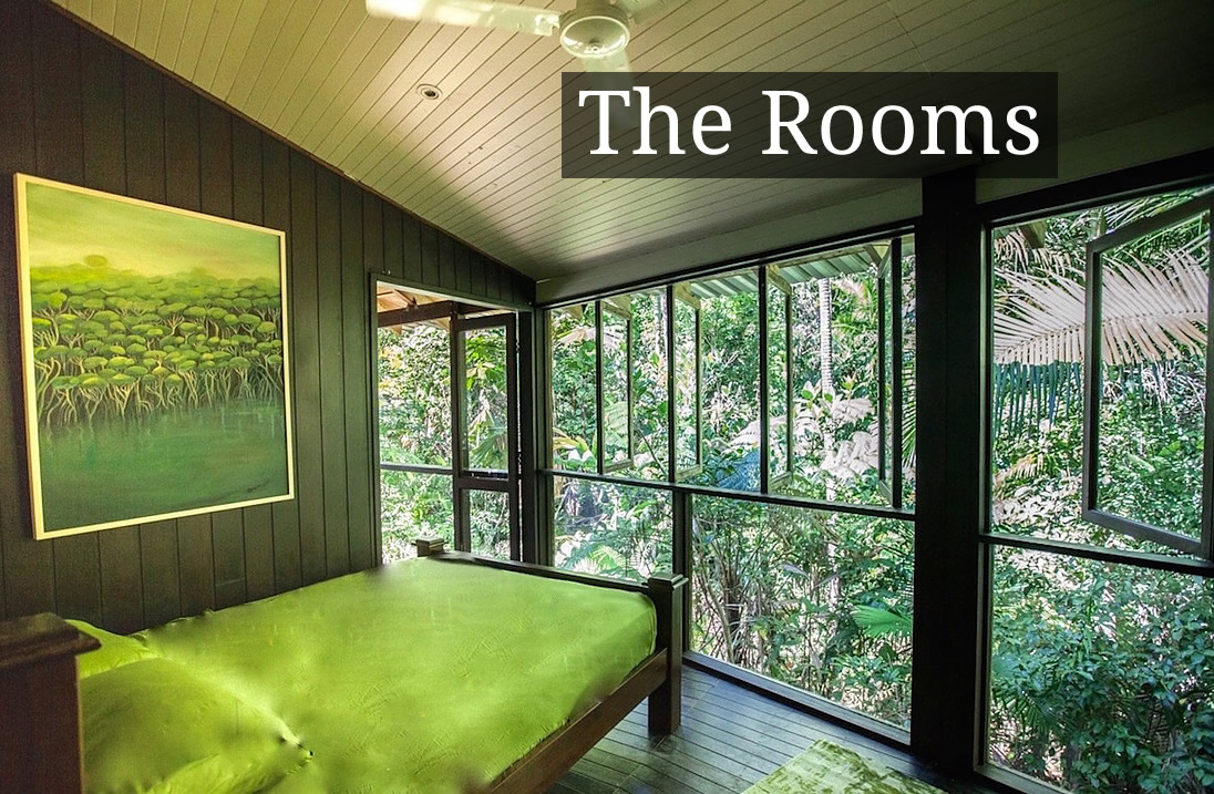 accommodation cape tribulation