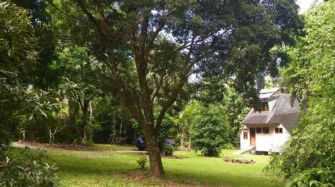 cape tribulation holiday house